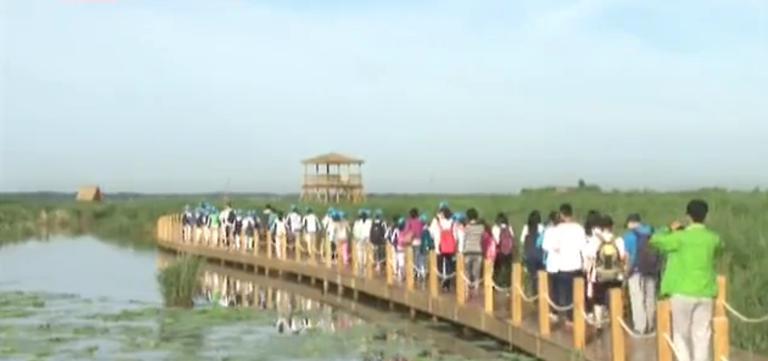 黑龙江——走进兴凯湖,科考过暑假